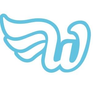 WunderCar wurde im letzten Jahr gegründet, hat über 20 Mitarbeiter und ist in 3 Städten aktiv