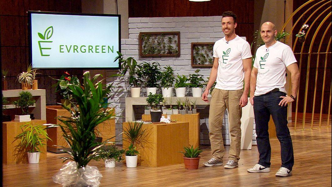 """500.000 Euro wünschen sich Philip Ehlers (38, l.) und Jan Nieling (36) von den """"Löwen"""". Dafür bieten sie den potentiellen Investoren 20 Prozent an ihrer Firma Evrgreen - einem Online-Shop für Pflanzen."""