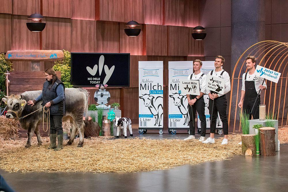 Nicolas Hartmann, Niklas Kattner und Moritz Braunwarth haben für ihre vly-Demo eine Kuh mitgebracht.  (Foto: TVNOW / Bernd-Michael Maurer)